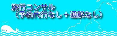 海とイルカの画像
