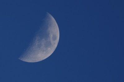 半月の写真