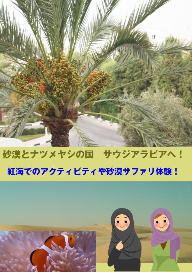 砂漠、ヤシの木、熱帯魚の写真とイスラム女性のイラスト