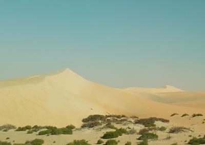 ルブアルハリ砂漠